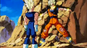 Goku vs vegeta 800