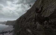 Rangers climbing a cliff CoD2
