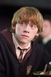 Ron-Order-of-the-Phoenix-ronald-weasley-4959523-285-428