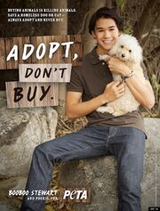 BOOBOO-STEWART-PETA-AD