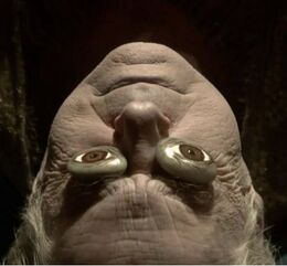 Jon Arryn