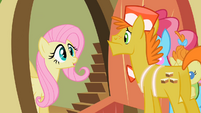 Fluttershy&#39;s ooh face S02E13