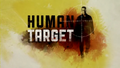 Human Target 2010