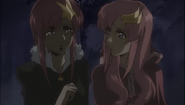 Meer &amp; Lacus