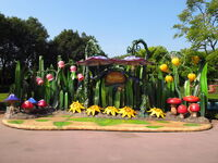 Pixie Hollow at Hong Kong Disneyland