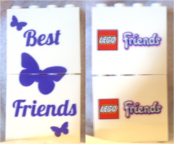 Friends Promotional Bricks