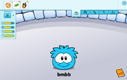 Blue puffle caring card