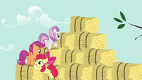 CMC bouncing onto bales 2 S2E17