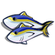 Yellow Fin Tuna-icon