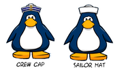 Crew cap sailor hat comparrison