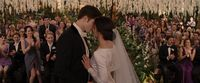 BreakingDawnPt1-0681