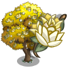 Yellow Magnolia Tree-icon