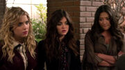 PLL222 (6)