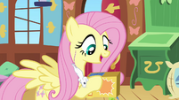 Fluttershy feeding S02E19