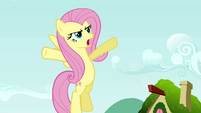 New Fluttershy 1 S2E19