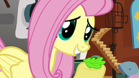 Fluttershy leaf S02E19