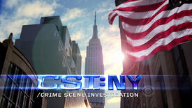 CSI NY Title
