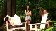 PLL207 (8)