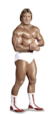 Paul Orndorff Full