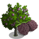 Sugar Apple Tree-icon