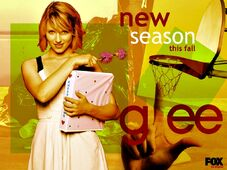 Glee-season-3-wallpaper-glee-25205140-1024-768