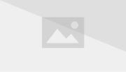 SS All Shogun Rangers