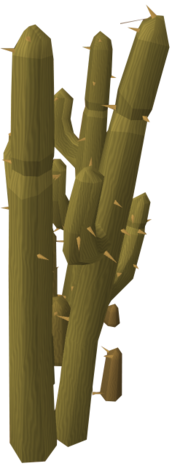 Alkharid cacti
