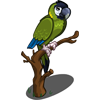 Golden Collar Macaw-icon
