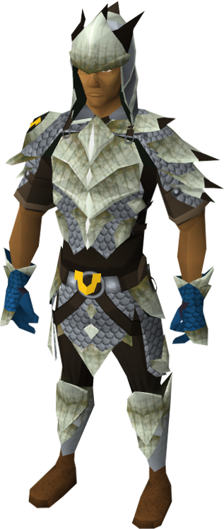 Dyed silver d'hide blessed set equipped male
