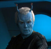 Shran, 2154