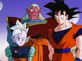 Dbz241(for dbzf.ten.lt) 20120403-17155192