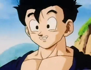 Gohan smiling