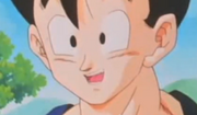 Smile my gohan