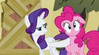 Rarity jab Pinkie Pie S2E19