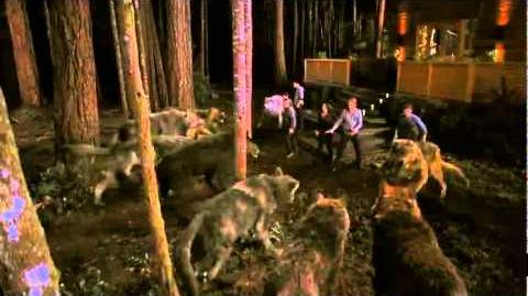 New TV Spot For 'The Twilight Saga Breaking Dawn - Part 1' TV Spot 7