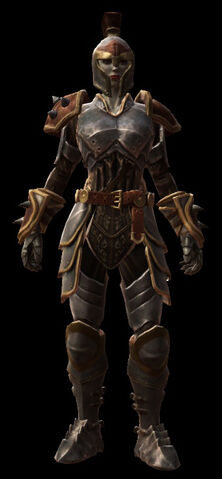 The guardian armor set female