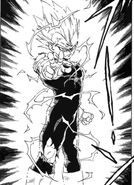 00000000Majin Vegeta-manga