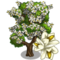 Carolina Silverbell Tree-icon