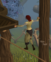 Gnome agility4