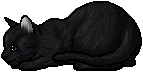 Crowfeather.kit