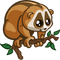 Slow Loris-icon