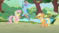 Rainbow Dash salute S1E10