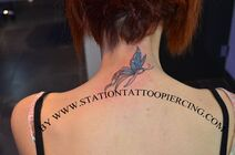 Buterfly tattoo,colour,neck,back,female,