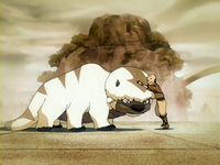 Aang meets Appa