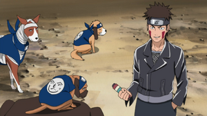 Kiba&#39;s Determination