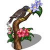 Mynah Bird-icon