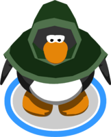 Green Hooded Cloak in-game