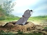 Winniethepooh-disneyscreencaps com-1815