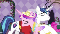 Cadance and Shining Armor slow dancing S2E26