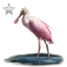Item roseatespoonbill silver 01